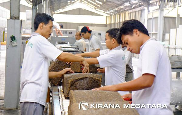 Kiranamegatara.com